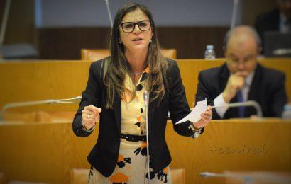 CDS-PP critica atuação do Governo dos Açores em prejuízo dos agricultores regionais