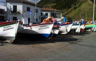 """PCP/Açores quer remuneração compensatória da pesca """"livre das decisões arbitrárias"""" do Governo"""