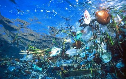Estudo sobre o lixo marinho flutuante em Portugal revela preocupação