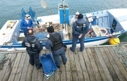 Detetada embarcação a operar sem lotação mínima de segurança na Terceira