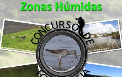 Zonas Húmidas são tema de concurso de fotografia na Praia da Vitória