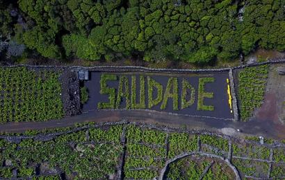 1Km de arte na natureza na ilha do Pico nomeado para o prémio Azores Top 10