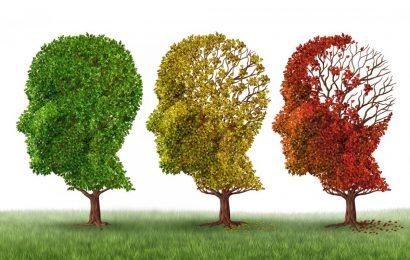 Alzheimer Portugal reivindica estatuto do cuidador informal