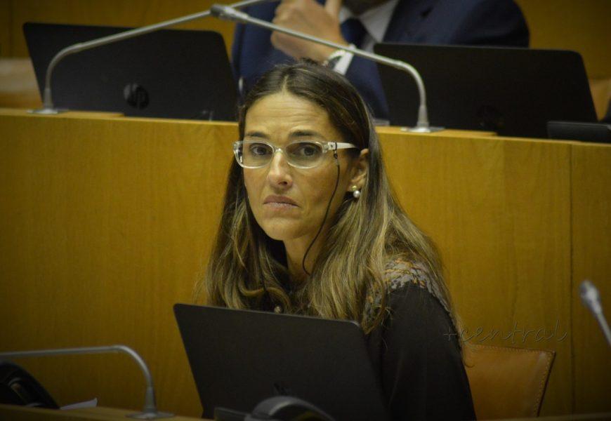 """Eleitos socialistas """"congratulam-se"""" com retoma da ligação Terceira/Madrid"""
